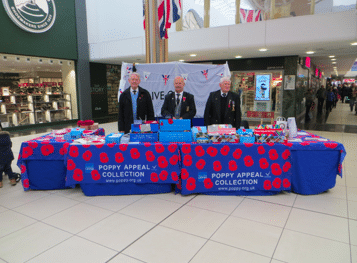 Poppy Appeal Collection at High Chelmer